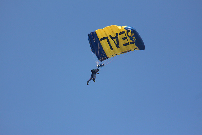 -(Nation & Service) United States Navy<br /> -(Squadron) United States Navy Leap Frogs<br /> -(Home Base) San Diego, California