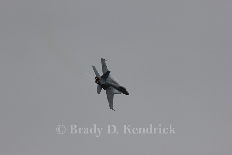 """-(Aircraft) Boeing F/A-18F Hornet<br /> -(Nation & Service) United States Navy<br /> -(Squadron) Strike Fighter Squadron 106 """"Gladiators""""<br /> -(Home Base) Naval Air Station Oceana, Virginia"""