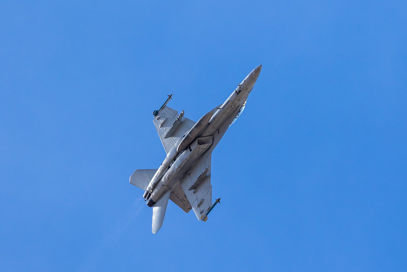 "-(Aircraft) Boeing F/A-18F Super Hornet<br /> -(Nation & Service) United States Navy<br /> -(Squadron) Strike Fighter Squadron 122 ""Flying Eagles"" <br /> -(Home Base) Naval Air Station Lemoore, California"