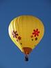 Skyfest Balloon Festival