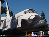 Endeavour in the trees, while traveling through the streets, some trees got trimmed so that Endeavour could fit.