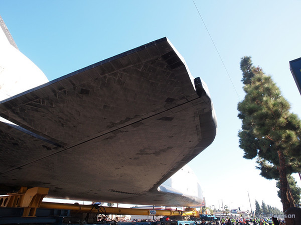As Endeavour dodges trees, her wings go over the sidewalks and provide some shade to the crowds.