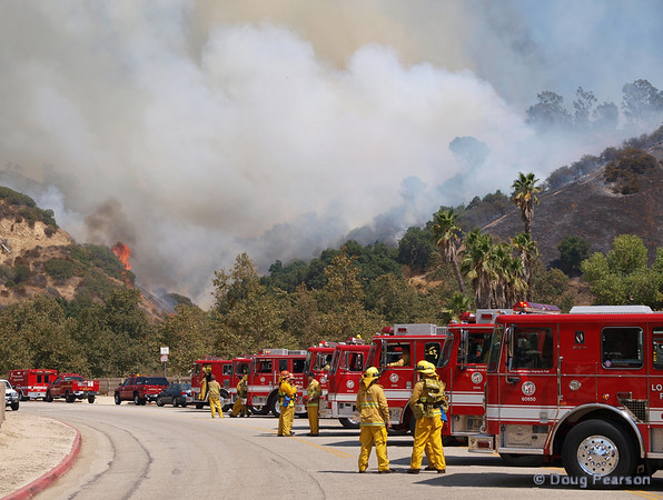 Engines in staging, ready to work a Brush fire near Travel Town in Griffith Park, Los Angeles, CA
