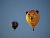 2020 Havasu Balloon Festival, Duma and Spilt Paint