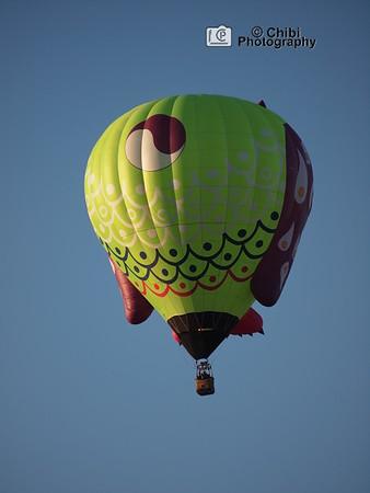 2020 Havasu Balloon Festival, Whooz Up