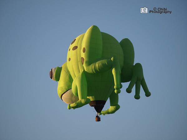 2020 Havasu Balloon Festival, Kermie Frog