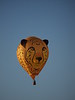 2020 Havasu Balloon Festival, Duma the Cheetah
