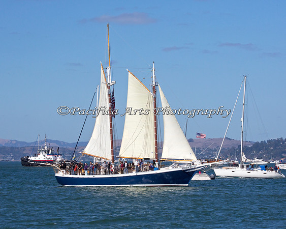 "Looks like this 80' Classic Gaff Rigged Topsail Schooner, the ""Freda B"" has a full load aboard to watch the Fleet Week events in the San Francisco Bay."