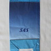 SAS Scandinavian Airline System (SK) Sick Bag (Rear)