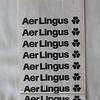 Aer Lingus (EI) Sick Bag (Front)