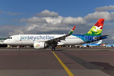 """Veuve"" - Seychelles Paradise Flycatcher"