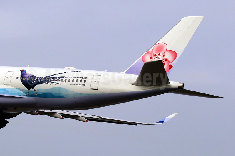 "China Airlines' special 2016 ""Mikado Pheasant""  livery, an endangered species"