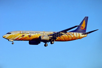 "Hainan's 2001 ""golden grain"" special livery"