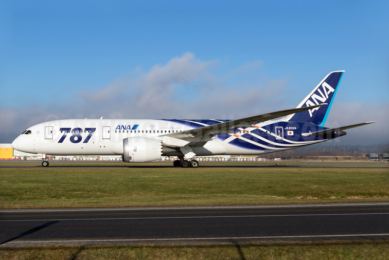 Special 787 Dreamliner livery