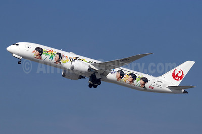 """""""JAL Hawaii - Arashi"""" special livery"""