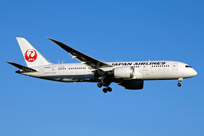 JAL-Japan Airlines Boeing 787-8 Dreamliner JA836J (msn 38135) JFK (Jay Selman). Image: 403141.