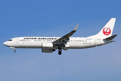 JAL-Japan Airlines Boeing 737-846 WL JA310J (msn 35339) NRT (Michael B. Ing). Image: 933993.