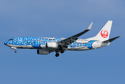 "JTA's new ""Jimbei Jet"", replaces JA8939"