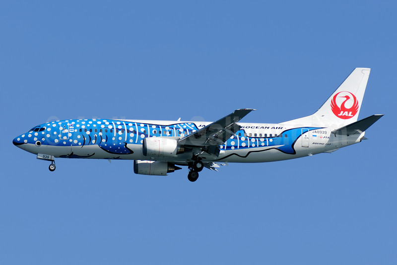 Japan Transocean Air-JAL Boeing 737-4Q3 JA8939 (msn 29486) (Jimbei Jet - Whale Shark) HND (Akira Uekawa). Image: 911005.