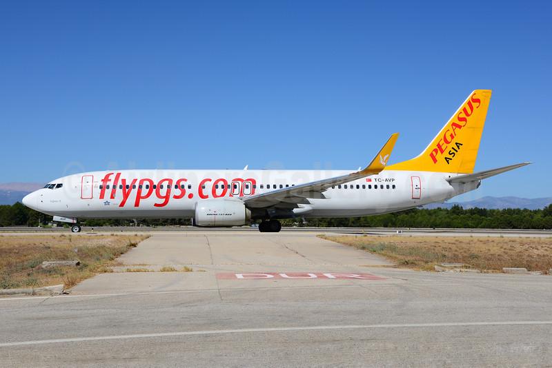 Airline Color Scheme - Introduced 2013 (Pegasus 2009)