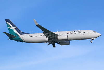 SilkAir Boeing 737-8SA WL 9V-MGO (msn 44231) SIN (Michael B. Ing). Image: 939265.