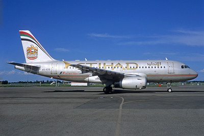 Two A319s in service