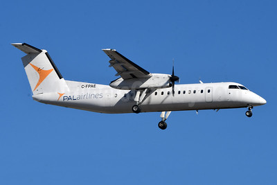 PAL Airlines (Canada) Bombardier DHC-8-315 (Q300) C-FPAE (msn 562) YYZ (TMK Photography). Image: 950156.