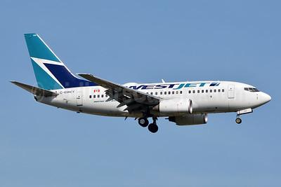 WestJet Airlines Boeing 737-6CT C-GWCY (msn 35113) JFK (Jay Selman). Image: 402521.