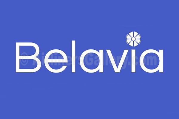 1. Belavia Belarusian Airlines logo