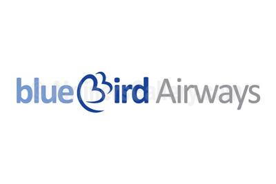1. Blue Bird Airways logo