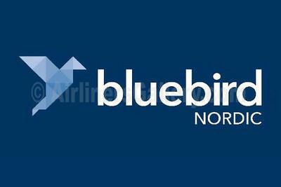 1. Bluebird Nordic logo