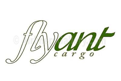1. Flyant Cargo logo