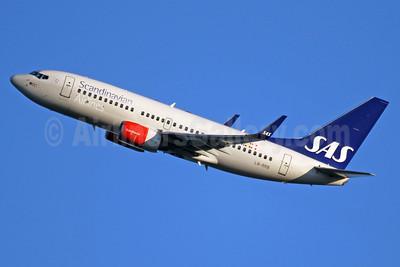 Scandinavian Airlines-SAS Boeing 737-783 WL LN-RRB (msn 32276) LHR (SPA). Image: 937974.