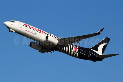 AnadoluJet (Turkish Airlines) Boeing 737-8F2 WL TC-JGF (msn 29790) (BJK 1903 - Besiktas Sports Club) FRA (Marcelo F. De Biasi). Image: 939059.