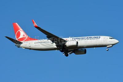 Turkish Airlines Boeing 737-8F2 WL TC-JVU (msn 60022) BSL (Paul Bannwarth). Image: 944672.