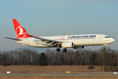 Turkish Airlines Boeing 737-8F2 WL TC-JVY (msn 60024) BSL (Paul Bannwarth). Image: 936777.