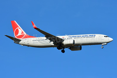 Turkish Airlines Boeing 737-8F2 WL TC-JHM (msn 40980) BSL (Paul Bannwarth). Image: 944671.