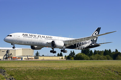 New 787-9: white nose version of the 2013 livery