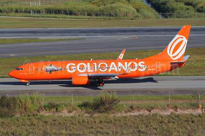 Gol Transportes Aereos Boeing 737-8EH WL PR-GTF (msn 34279) (GOL 10 ANOS) GRU (Marcelo F. De Biasi). Image: 909870.