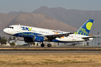 """TransVIP"" special livery"