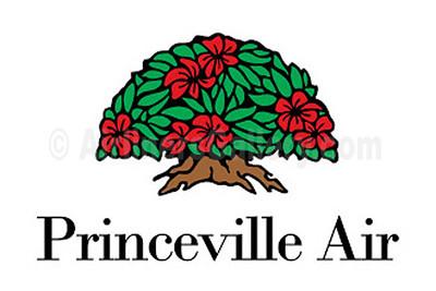 1. Princeville Airways logo