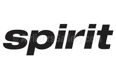 1. Spirit Airlines logo