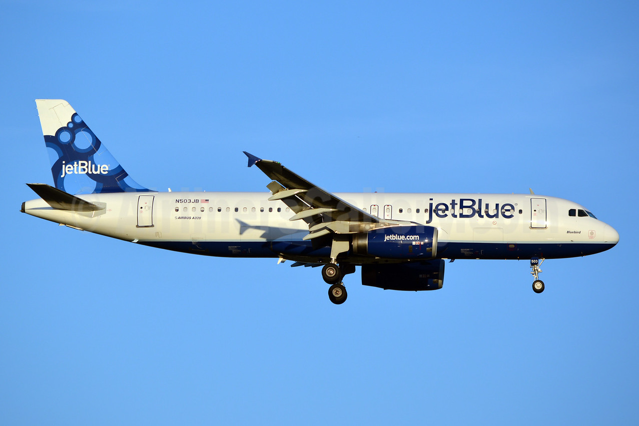 JetBlue Airways Airbus A320-232 N503JB (msn 1123) (Blueberries) JFK (Jay Selman). Image: 402456.