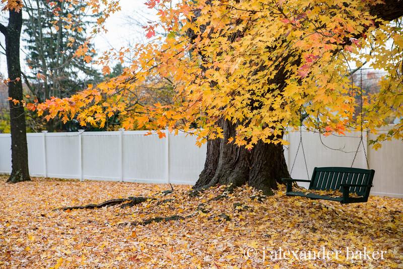 AutumnHome-6994.jpg