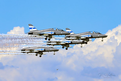 Finnish Hawks