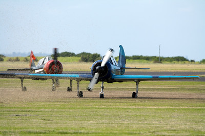 Yakovlev Aircraft Factories Yak-52 A Pack Of Yak's