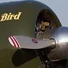 """""""J's Bird"""", a Harvard Mk 4 <a href=""""http://www.jsbird.net/"""">http://www.jsbird.net/</a>"""