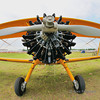 Boeing A75N1(PT17)