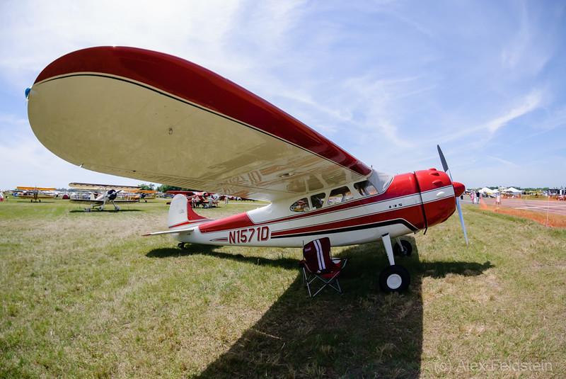1952 Cessna 195A