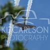 2014-04-04-KitCarlsonPhoto-167017
